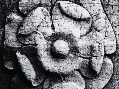 stone flower wallpaper stone relief