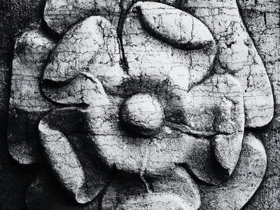 stone flower wallpaper stone relief