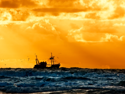 ocean, fishing, sunset, vivid color, work