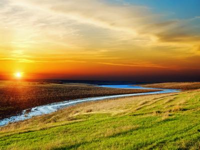 meadow landscape, sunset
