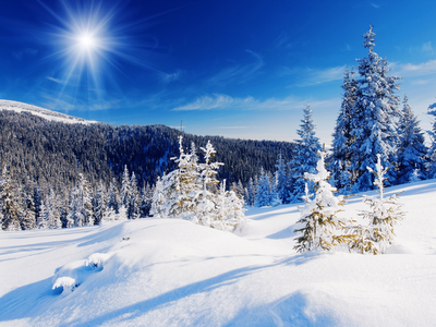 snowy landscape, mountains, spruce trees