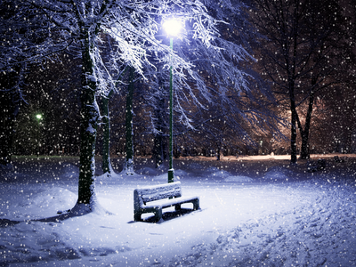 snow, winter, soft light, city park