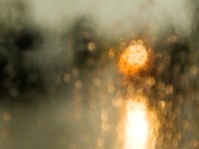 rain, water drops