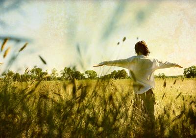 photography,photoshop, landscape, freedom,