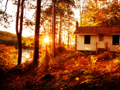 home autumn woods wallpaper